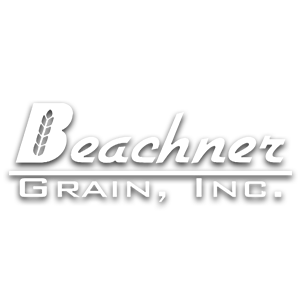 Beachner Grain